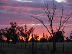 3 Night Outback Getaway for 2 JUST $500 Club Boutique Hotel Cunnamulla